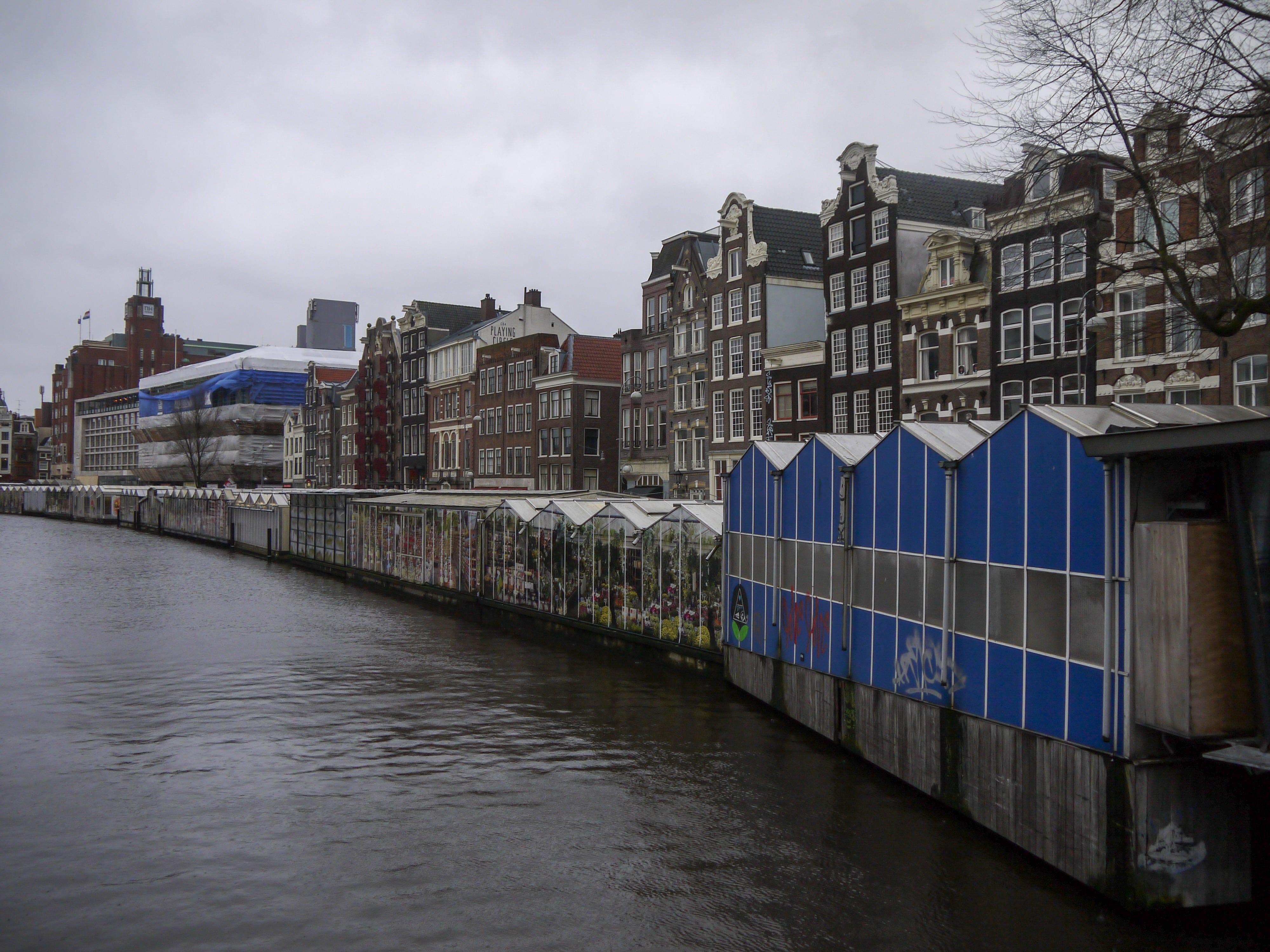 Amsterdam girando per la città