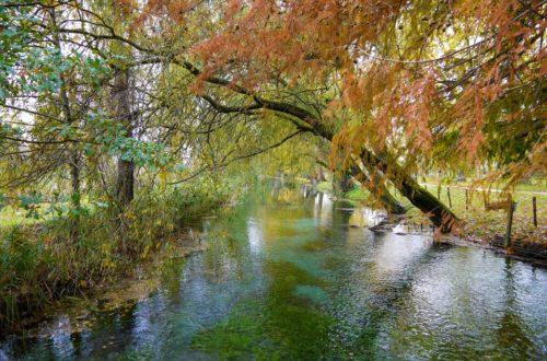 Dove ammirare il foliage autunnale in Umbria